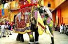 Horned Up Elephant Stampedes Through Hindu Wedding:
