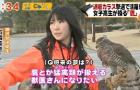 Teen Falconer Fights Crows in Japan: