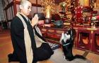 Zen Temole: Home of the Praying Dog: