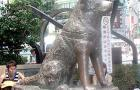 The Hachiko Mystery: Japan's Most Famous Dog: