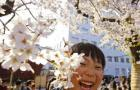 Japanese Fight Crime… With Flowers?: