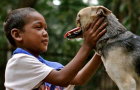 Kabang: The Story of a Dog Hero: