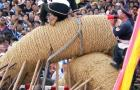 Japan Creates World's Biggest Tug-of-War Rope: