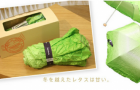 Japan Unveils the Latest in Fashionable Raingear: The Vegetabrella: