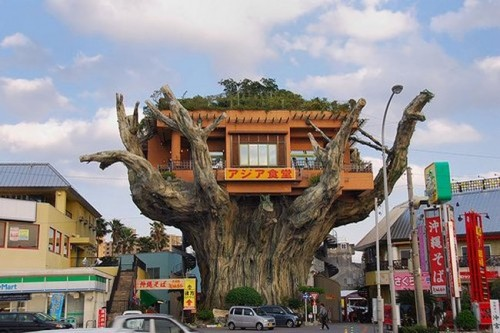 japanese-tree-restaurant01 Would You... Could You... In a Tree? picture