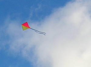 Airport Closed by Mysterious Flying Kite picture