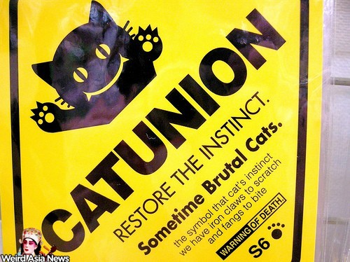 cat-union-engrish