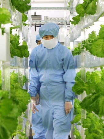 "Japanese ""Farmers"" Trade Boots for Lab Coats picture"