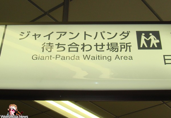 giant-pnda-waiting-area