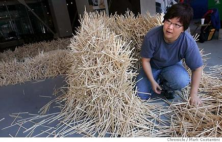 Artist Uses Chopsticks to Demonstrate Waste picture
