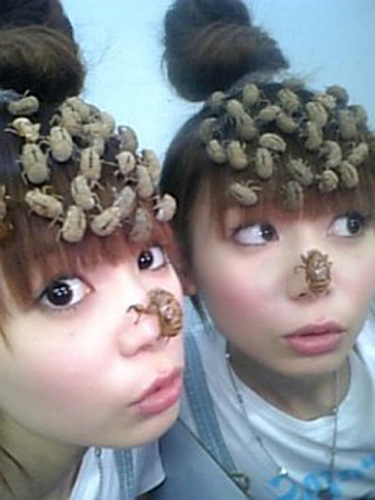 Japanese Entertainer Sports Dead Cicadas in Hair  picture