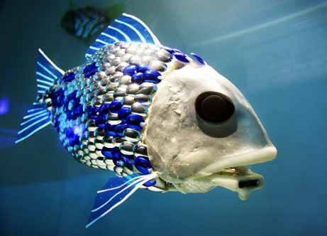 robot fish1 - Robot Fish Teach Japanese Children About Ocean Life
