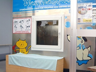 The Pet Washing Machine for Lazy Owners picture