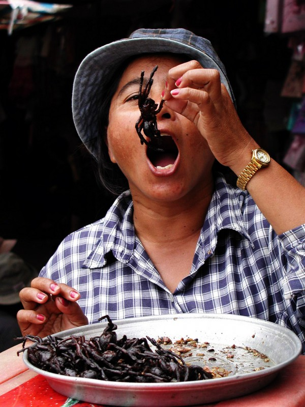 fried tarantula 600x800 6 Pets You Can Eat In Asia picture