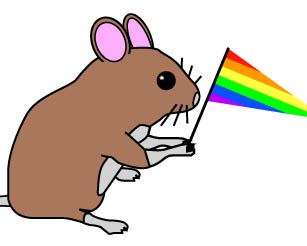 Chinese Scientists Create Gay Mice? picture