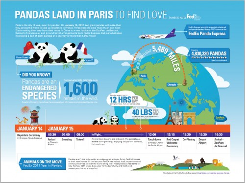 1 20 2012 10 03 54 AM1 500x373 Panda Love in Paris (Infographic) picture