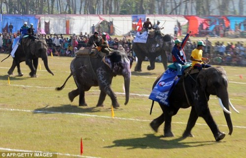 Nepal Holds Elephant Games to Increase Tourism picture