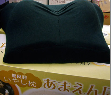 Boob Gadgets from Japan: Keeping Abreast of Popular Trends picture