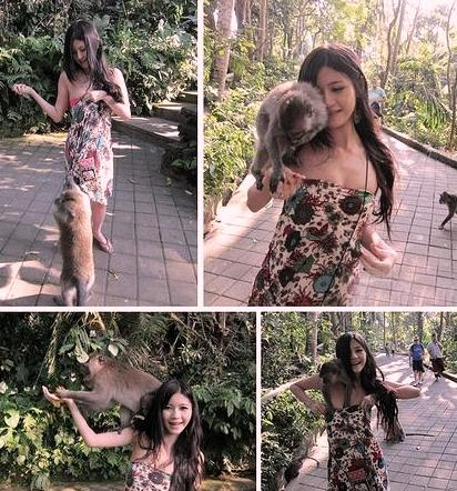 Monkeys Strip Taiwanese Girl at Local Zoo picture
