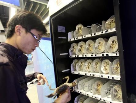 crab vending machine 4 Live Crab Vending Machines in China Subway picture