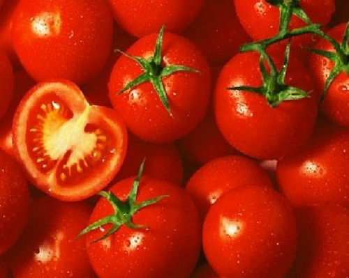 Tomatoes Are Drinkers Newfound Friend, Study Claims picture