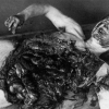 Japan's Unit 731, Revisited (Warning: Graphic) picture